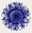 Sunflower sketch vector | Price: 1 Credit (USD $1)