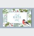 winter horizontal bullfinch banner vector image vector image