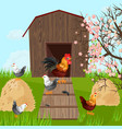 chicken farm coop spring season green vector image vector image