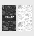 herbal tea card cafe restaurant menu or tea shop vector image vector image