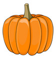pumpkin colored doodle vector image vector image