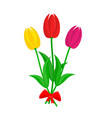bouquet of colorful tulips vector image vector image