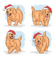 christmas puppy santa claus hat vector image