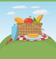 picnic food basket meaodw blanket vector image vector image