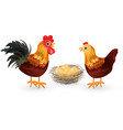 rooster chicken and eggs in the nest eco vector image vector image