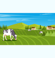 rural landscape with field trees grass and cows vector image