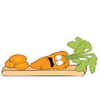 scared carrot on cutting board vector image