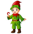 cartoon christmas elf holdi vector image vector image