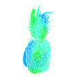 Colorful summer pineapple art vector image