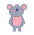 cute koala animal cartoon character on white vector image