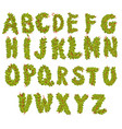 leaves alphabet letters vector image