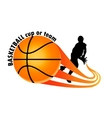 logo for a basketball team vector image