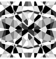 Monochrome Geometric Pattern vector image