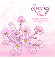 Primula Greetings Card vector image vector image