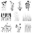 Set of plant vector image vector image