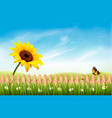 summer nature landscape background with sunflower vector image
