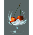 Wineglass ice and cherry vector image vector image