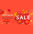 autumn sale banner only limited time discounts vector image