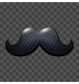 Black glossy mustache vector image