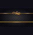 gold borders with glowing glitter effect design vector image