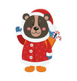 isolated cute bear is dressed in winter clothes vector image