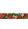 sketch garden berries leaves and flowers seamless vector image vector image