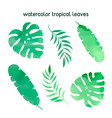 watercolor tropical leaves watercolor vector image vector image