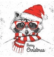 christmas hipster fashion animal raccoon vector image vector image