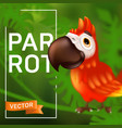 cute ara parrot with big beak sitting on the vector image vector image