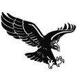 eagle with wings and claws vector image vector image