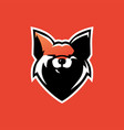 fox e sport logo icon vector image
