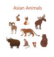 set cartoon cute asian animals hare fox vector image