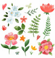 spring coral pink flowes set hand drawn vector image vector image