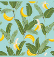 tropical seamless pattern with bananas and palm vector image