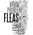 yikes i saw a flea on my dog text word cloud vector image vector image
