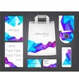 abstract identity set Crystal colorful vector image