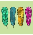 Set of four isolated hand drawn feather vector image