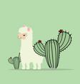 cute lama alpaca with cactus vector image