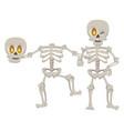 halloween skeleton bones character icon vector image vector image