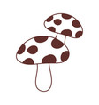 mushrooms nature vegetation isolated icon design vector image