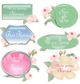 roses wedding label and sticker set vector image vector image