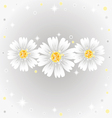 three daisy flowers on gray background vector image vector image
