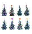decorated fir tree set vector image vector image