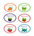 set of different label with garden berries vector image