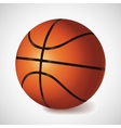 basket ball vector image