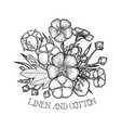 graphic linen and cotton design vector image vector image