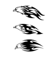 Eagle tattoos with flames vector image
