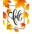 Autumn calligraphy Background of Fall leaves vector image vector image