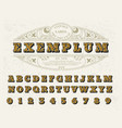 beautiful set of capital letters vintage vector image