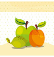 fruits fresh organic healthy lemon peach green vector image